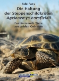Steppenschildkröten Agrionemys horsfieldii
