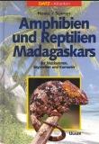 Amphibien und Reptilien Madagaskars