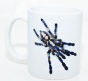 Kaffeebecher Poecilotheria metallica