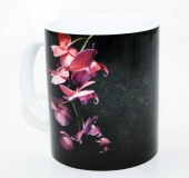 Kaffeebecher Phalaenopsis 1
