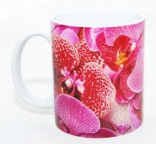 Kaffeebecher Phalaenopsis 2