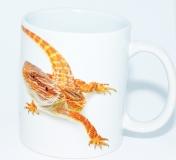Kaffeebecher Pogona vitticeps 6