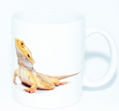 Kaffeebecher Pogona vitticeps 5