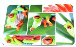 Kühlschrankmagnet Agalychnis callidryas 2